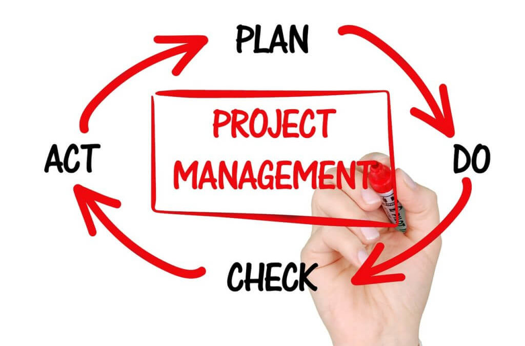 Finding Your Sweet Spot Between Technology and Project Management